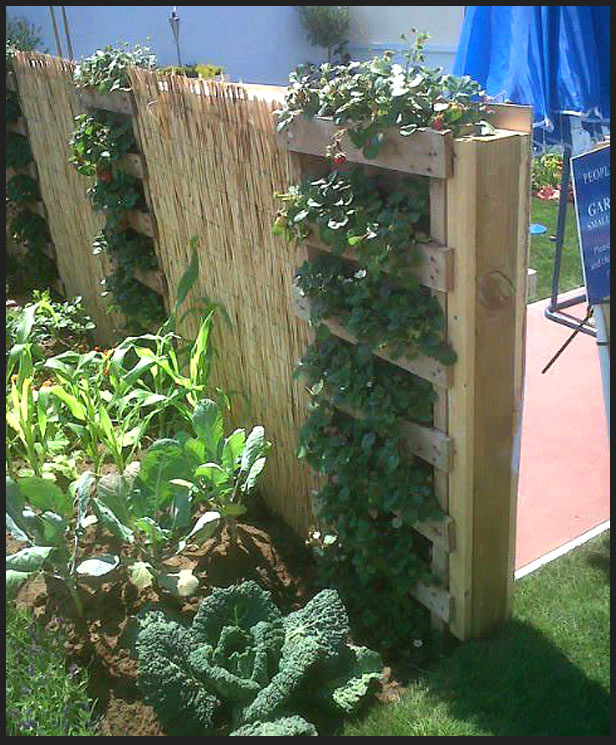 Vertical Pallet Garden Instructions