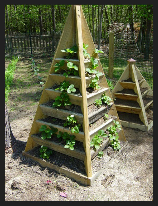 Best Tower Garden Instructions For Your Garden Garden And Seeds