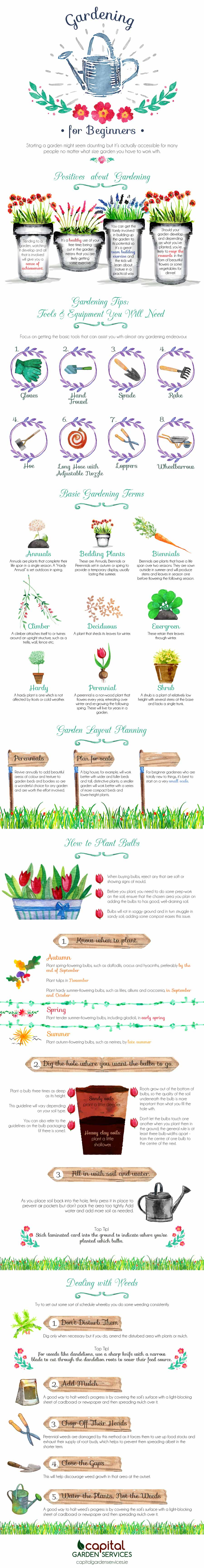 Gardening-for-Beginners-Infographic