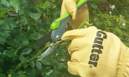 Different Types of Gardening Gloves